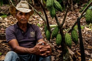 Cacaocultor Rubén Darío, Jinotega, Nicaragua. Foto cortesía Ingemann Fine Cocoa