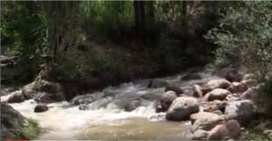 video Intibuca