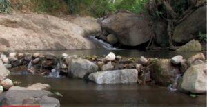 Río abajo Café y manejo del recurso hídrico
