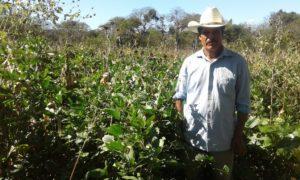 La experiencia de las ECA en Nicaragua4