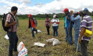 La experiencia de las ECA en Nicaragua9.jpg.png