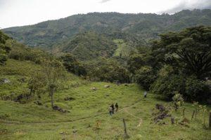 Algunas claves para lograr el involucramiento de los actores en la restauración del paisaje